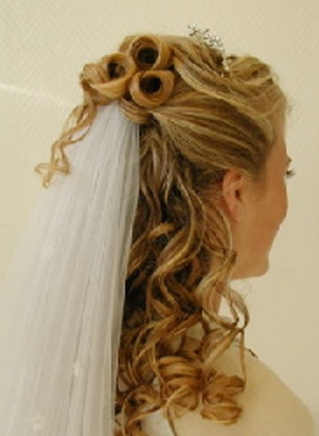 Wedding Hairstyles With Veil Underneath | New Wedding Down Regarding Wedding Hairstyles With Veil Underneath (View 13 of 15)