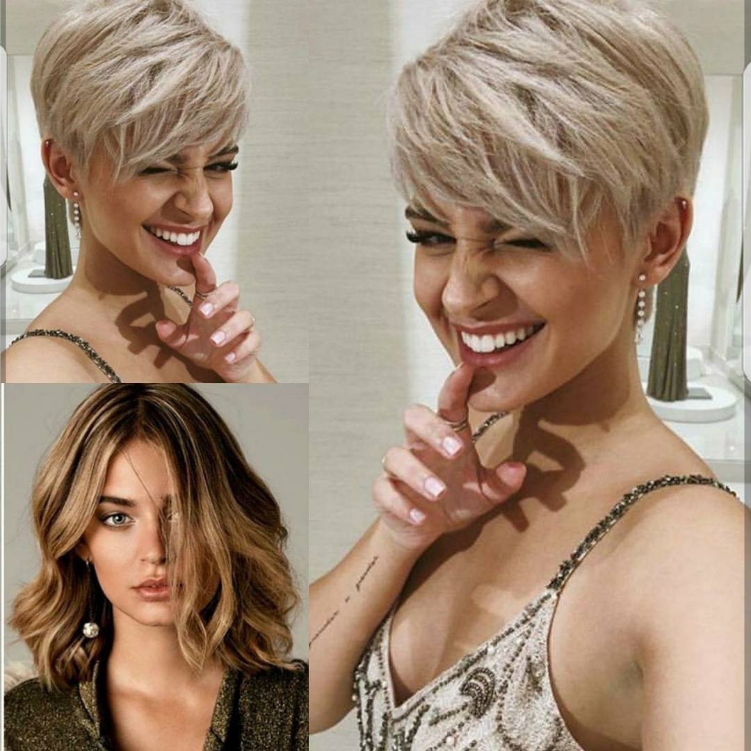 2018 Best Of Silver And Brown Pixie Haircuts