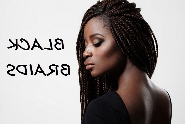 100 Captivating Braided Hairstyles For Black Girls? Throughout Recent Long Chunky Black Braids Hairstyles (View 13 of 15)