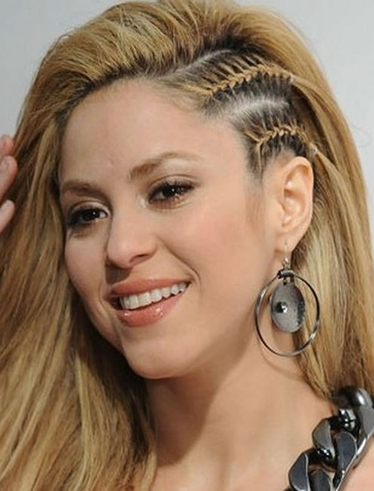 100 Side Braid Hairstyles For Long Hair For Stylish Ladies In 2017 Throughout Most Up To Date Braided Hairstyles To The Side (View 2 of 15)