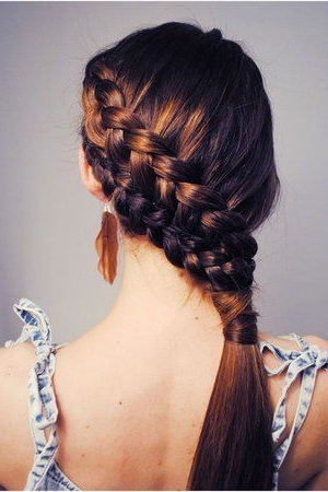 11 Pretty Double Dutch Diagonal Braided Designs For Girls – Pretty Within Latest Diagonally Braided Ponytail (View 8 of 15)