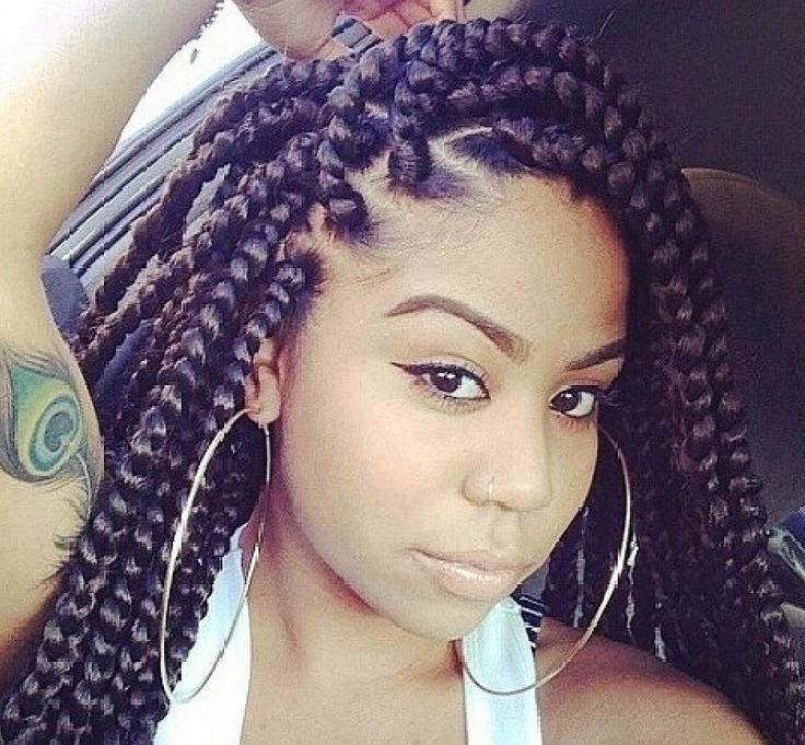 12 Jumbo Box Braids Styles That Make Bold Fashion Statement Pertaining To Most Recently Multicolored Jumbo Braid Hairstyles (View 14 of 15)