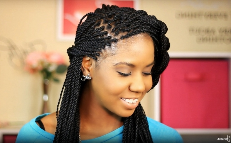 15 Exquisite Diy Box Braided Hairstyles Fancy Style Thin Box Braids In Current Cornrows Hairstyles For Thin Edges (View 13 of 15)