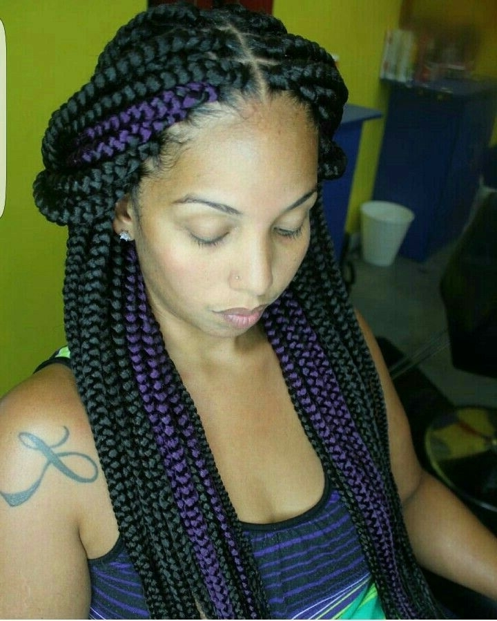 180 Best Box Braids Images On Pinterest | African Hairstyles, Braid Inside Current Braided Extension Hairstyles (View 11 of 15)