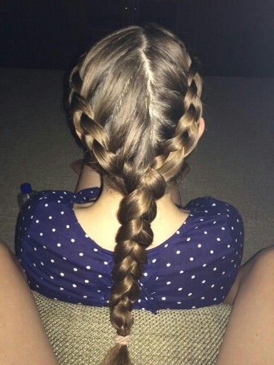 19 Best Hairstyles I Have Done (With The Help Of My Kids At Work For 2018 Two Braids Into One (View 8 of 15)