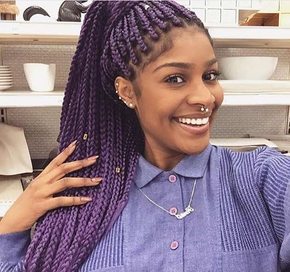20 Aristocratic Purple & Grey Box Braid Styles – Hairstylecamp Intended For Newest Purple Highlights In Black Braids (View 4 of 15)