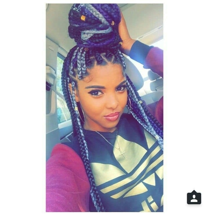 20 Aristocratic Purple & Grey Box Braid Styles – Hairstylecamp With Best And Newest Purple Highlights In Black Braids (View 7 of 15)