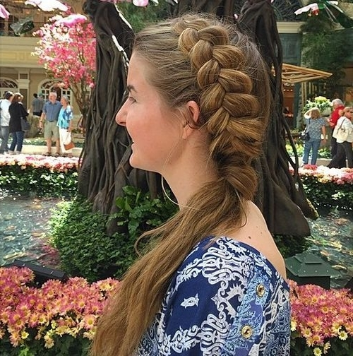 20 Easy French Braid Ponytails You May Want To Copy – Hairstyles Weekly For Best And Newest Asymmetrical Braids With Curly Pony (View 14 of 15)