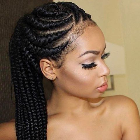Featured Photo of Braided Hairstyles For Afro Hair