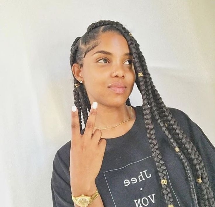 40 Best Don't Touch My Crown Images On Pinterest   Protective Pertaining To Most Recent Minimalistic Fulani Braids With Geometric Crown (View 3 of 15)
