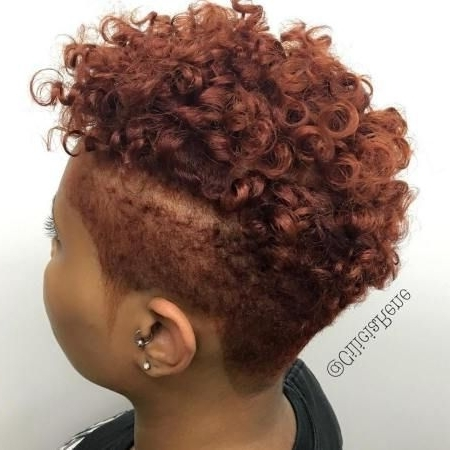 40 Cute Tapered Natural Hairstyles For Afro Hair Regarding 2018 Braided Hairstyles With Tapered Sides (View 12 of 15)