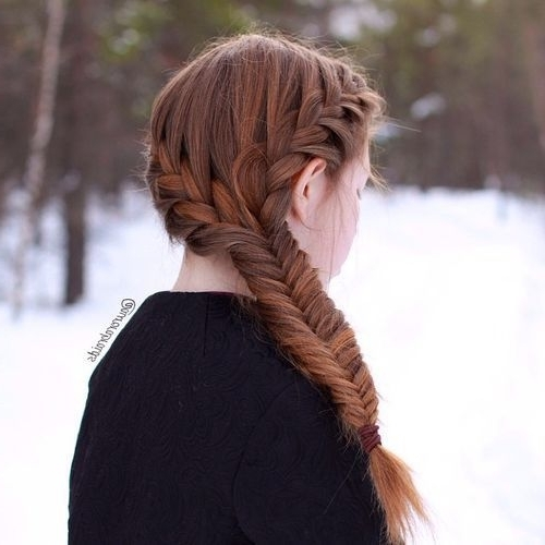 40 Two French Braid Hairstyles For Your Perfect Looks | Hairstyles With Regard To Most Current French Braids Crown And Side Fishtail (View 2 of 15)