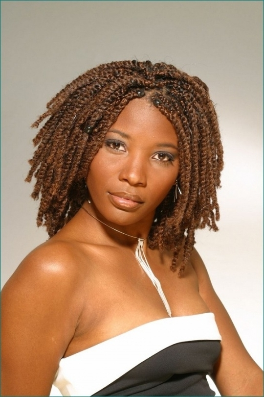 52 African Hair Braiding Styles And Images – Beautified Designs Intended For 2018 Braided Hairstyles For African American Hair (View 13 of 15)
