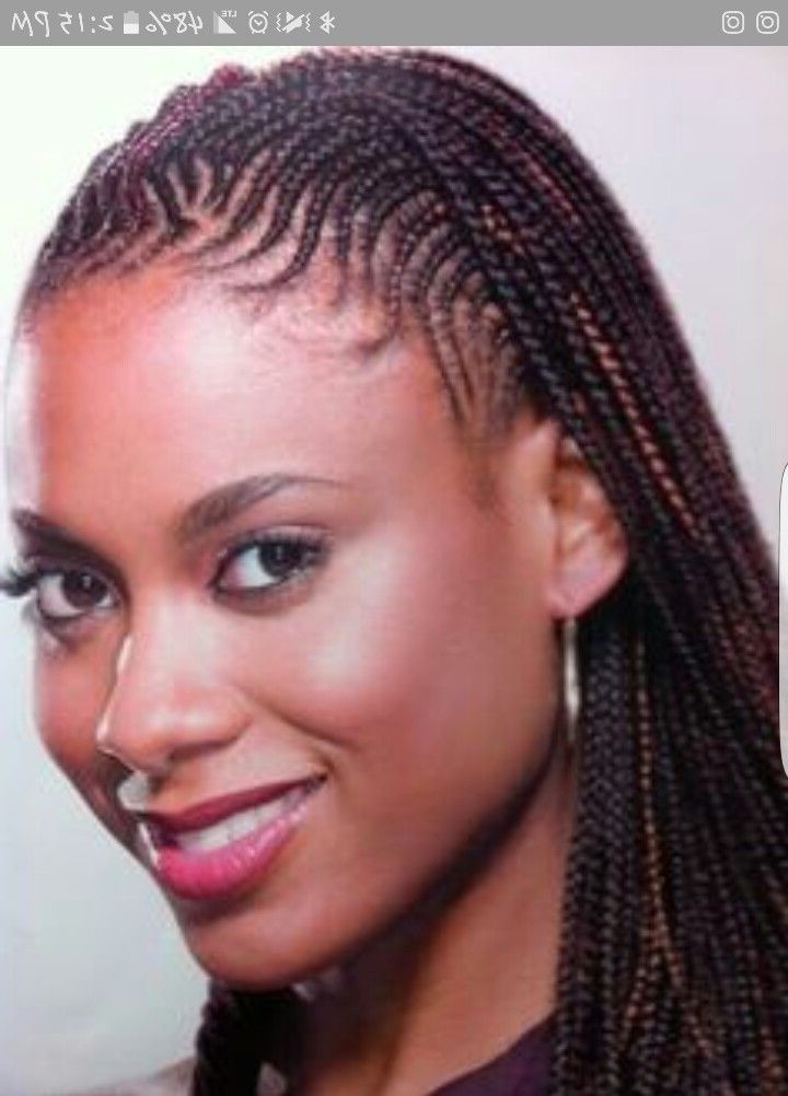 61 Best Hairstyles Images On Pinterest | African Hairstyles Within Latest Nubian Princess Fulani Braid Pullback (View 9 of 15)
