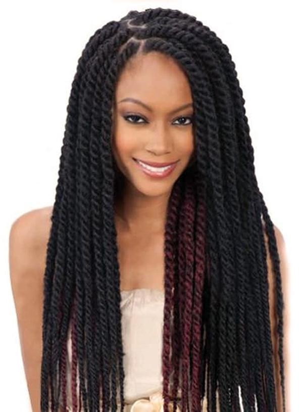 66 Of The Best Looking Black Braided Hairstyles For 2018 Pertaining To Most Recent Braided Hairstyles For Dark Hair (View 9 of 15)