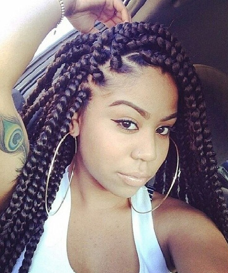 75 Super Hot Black Braided Hairstyles To Wear | Hair And Braids Throughout Current Long Chunky Black Braids Hairstyles (View 11 of 15)