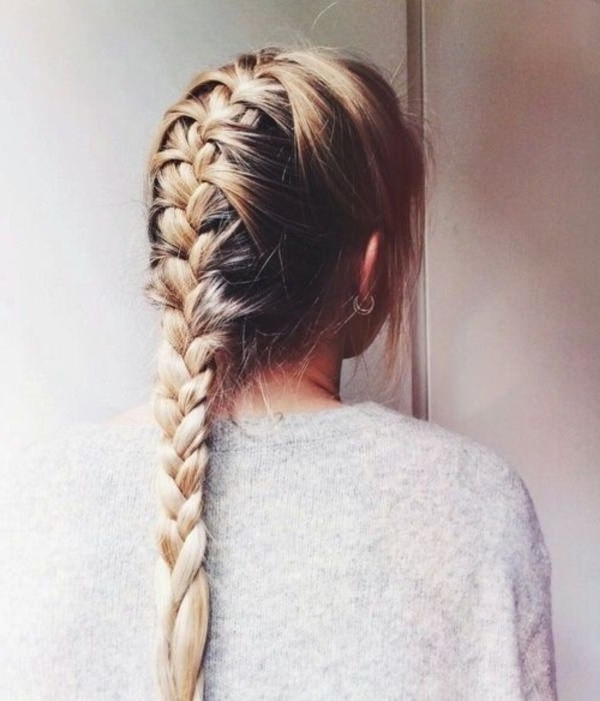 98 Elegant And Beautiful French Braid Ideas Intended For 2018 Two Classic Braids Hairstyles (View 6 of 15)