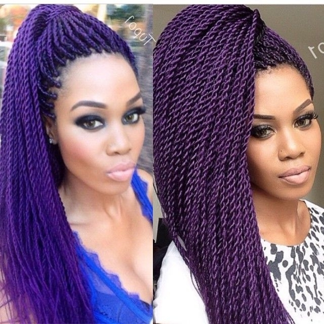 Amusing Hair Extension Also Senegalese Twist Hair Colors – Oceasana Regarding Best And Newest Braided Hairstyles With Color (View 5 of 15)