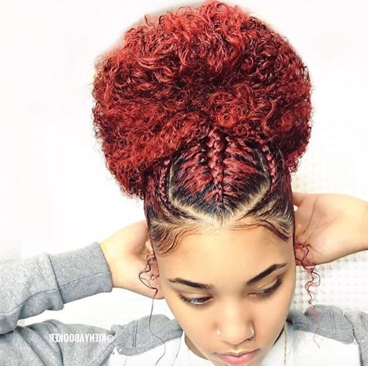 Beautiful Bun @kienyabooker – Https://blackhairinformation With 2018 Braided Hairstyles For Naturally Curly Hair (View 8 of 15)