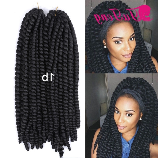 Best Havana Mambo Twist Crochet Expression Braiding Hair Synthetic Within Newest Braided Hairstyles With Fake Hair (View 8 of 15)