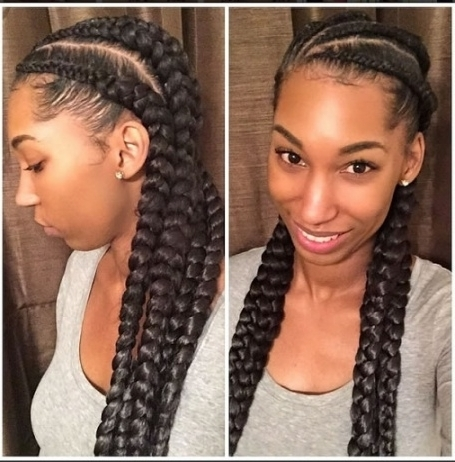 Black Braided Hairstyles 2017 – Big, Small, African, 2 And 4 Regarding Most Recently Long Chunky Black Braids Hairstyles (View 14 of 15)