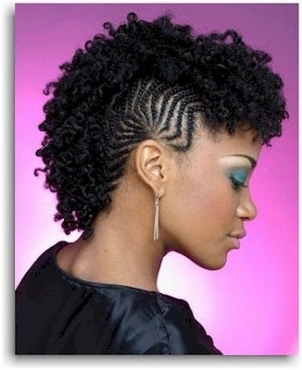 Black Braided Mohawk Hairstyles – Youtube Intended For Most Current Braided Hairstyles In A Mohawk (View 15 of 15)