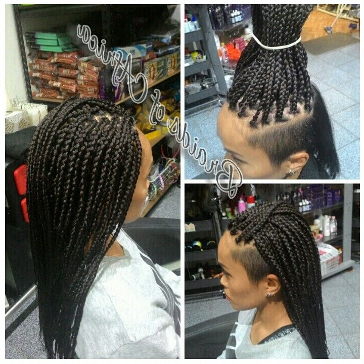 Box Braids Hair Extensions With Shaved Sides … | My Fave Looks | Pinte… Intended For Current Braided Hairstyles With Tapered Sides (View 8 of 15)