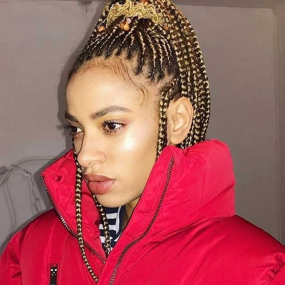 Box Braids Hairstyles For Black Women 6 | African American With Regard To Most Popular Thin Cornrows Hairstyles (View 8 of 15)