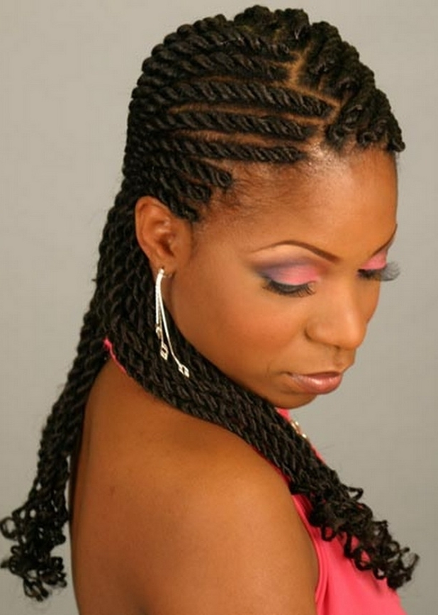 Braid Hairstyles For Black Women – Stylish Eve Within Most Up To Date Braided Hairstyles For Afro Hair (View 15 of 15)