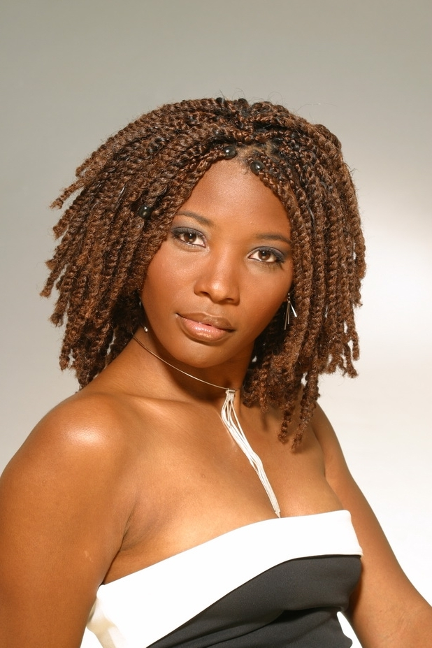 Braid Hairstyles For Black Women 19 – Stylish Eve With Regard To Recent Braided Ethnic Hairstyles (View 15 of 15)