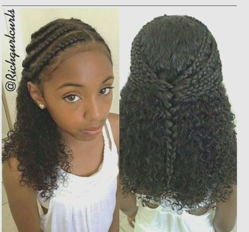 Braid Hairstyles With Real Hair Lovely Natural Hair Style Hair Haute For Recent Braided Hairstyles With Real Hair (View 9 of 15)