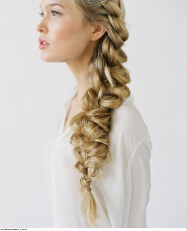 Braid Prom Hairstyles For Long Hair Within Current Prom Braided Hairstyles (View 13 of 15)