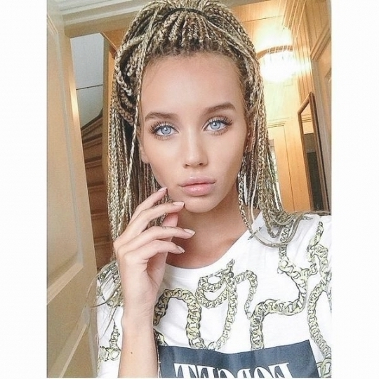 Braid Styles For White Hair Stunning 1000 Ideas About White Girl Pertaining To 2018 Braided Hairstyles For White Girl (View 9 of 15)