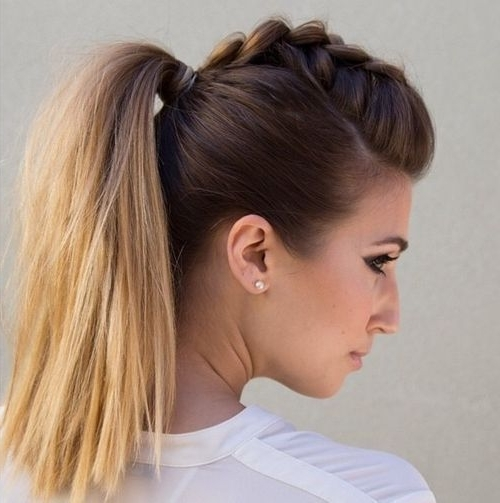 Braided Ponytail Ideas: 40 Cute Ponytails With Braids | Hair Ill Inside Latest Mohawk With Double Bump Hairstyles (View 10 of 15)