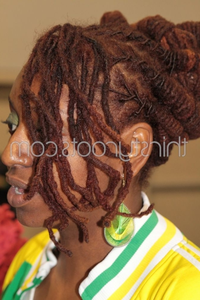 Braids Dreadlocks   Dreadlocks And Locs Throughout Most Popular Braided Dreadlock Hairstyles For Women (View 2 of 15)