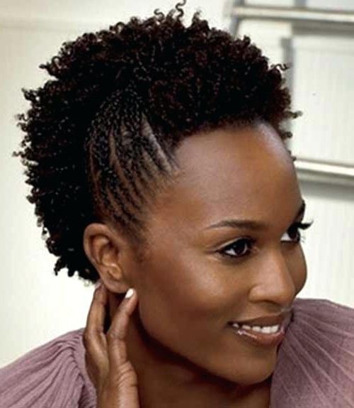 Braids For Short Natural Hair Natural Hairstyles With Braids Regarding Most Popular Braided Hairstyles On Short Natural Hair (View 8 of 15)