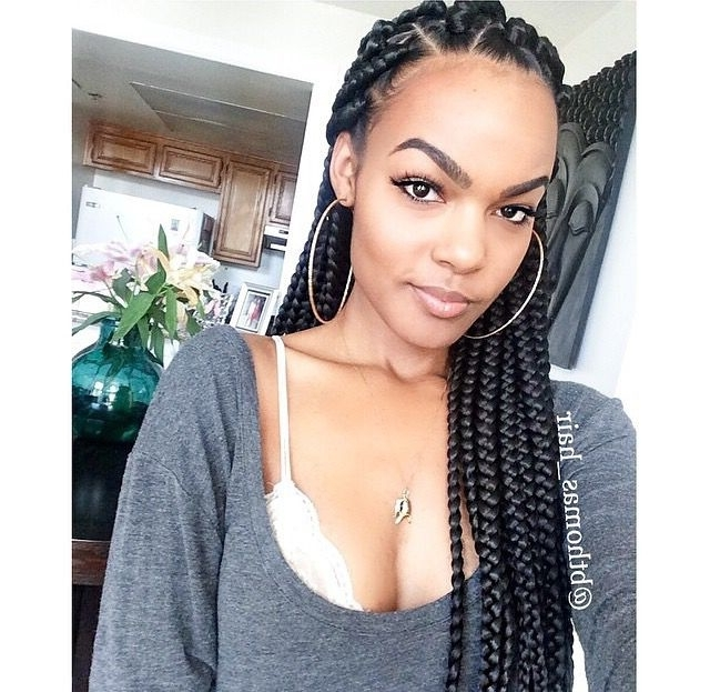C A0726C9Ff55Acd8D8Eff D 640—623 Pixels Long Braid Hairstyles Black For Most Popular Long Chunky Black Braids Hairstyles (View 7 of 15)