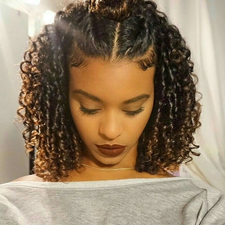 Featured Photo of Braided Hairstyles With Curly Hair