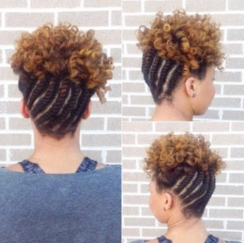 Curly Hairstyle With Braid 17 Braided Updo Hairstyle With Curls For In Recent Braided Updo Hairstyle With Curls For Short Hair (View 14 of 15)