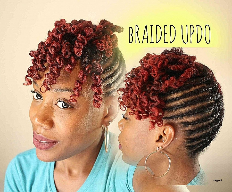 Curly Hairstyles: Unique Braided Hairstyles For Naturally Curly Ha Intended For Recent Braided Hairstyles For Naturally Curly Hair (View 10 of 15)