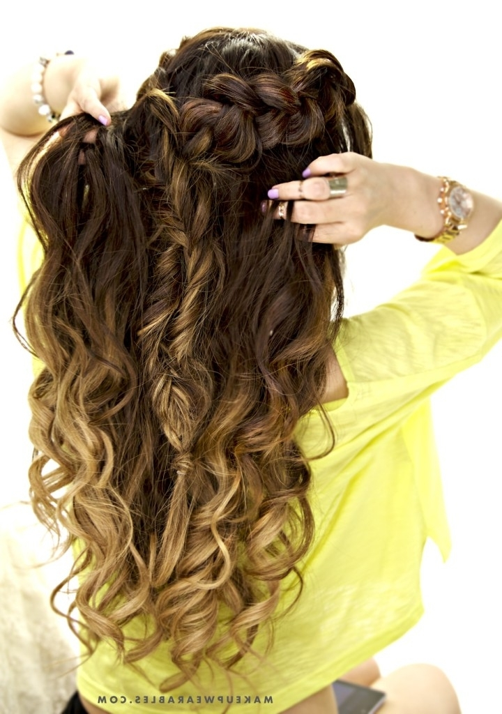 Cute Combo Braid   Half Up Half Down Hairstyle   School + Everyday Regarding Current Braided Hairstyles With Hair Down (View 10 of 15)