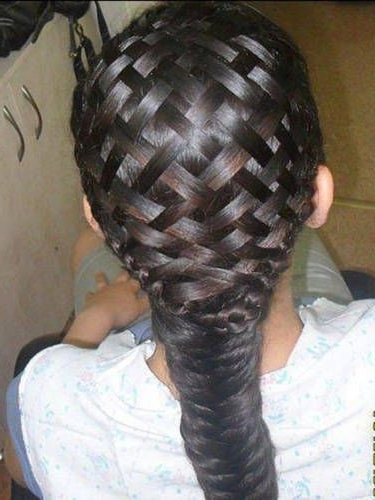 Diy Braided Hairstyles We Love | Hair | Pinterest | Braid Hair Throughout Newest Lattice Weave With High Braided Ponytail (Gallery 6 of 15)