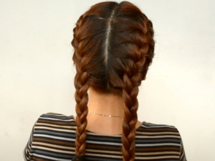 Double French Braids: How To Create + 10 Best Styles – Hairstylecamp For Most Popular Two Classic Braids Hairstyles (View 5 of 15)
