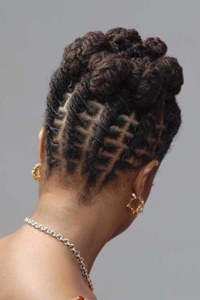Dreadlocks And Twists Hairstyle For South African Women | Hairstyle Pertaining To Latest Braided Dreads Hairstyles For Women (Gallery 6 of 15)