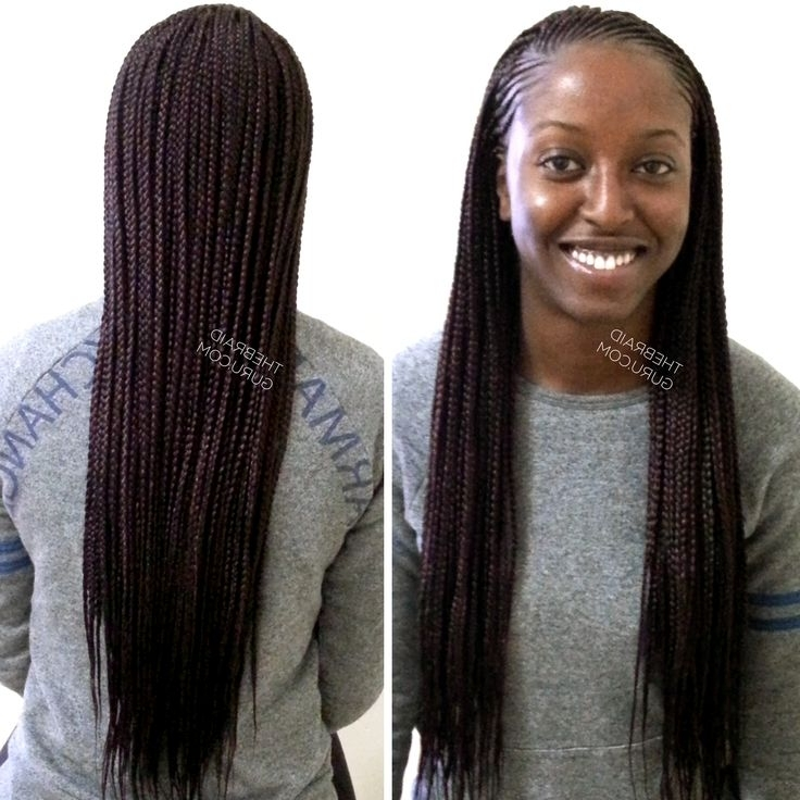 Feed In Cornrows With Individuals – Extra Long Braids Pertaining To Most Up To Date Two Extra Long Braids (View 3 of 15)