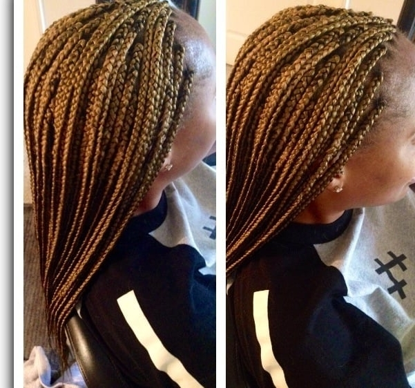 For Clients Who Have Blonde Hair Color #27 Synthetic Braiding Hair Inside Newest Braided Hairstyles With Color (View 12 of 15)
