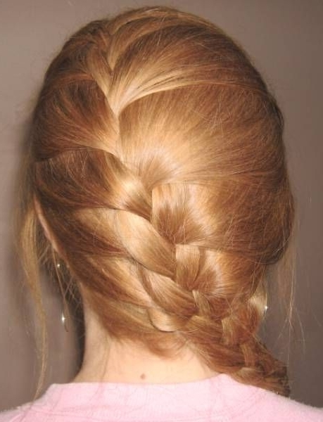 French Braids Hairstyles | Click For Larger Photo Of Diagonal French In Recent Diagonal French Braid Hairstyles (View 14 of 15)
