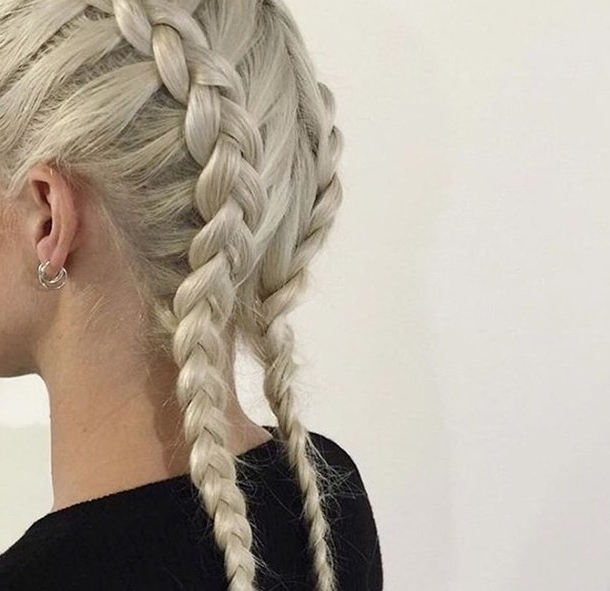 Hair Style : Braids Hairstyles For White Hair Inside 2018 Braided Hairstyles For White Hair (View 6 of 15)
