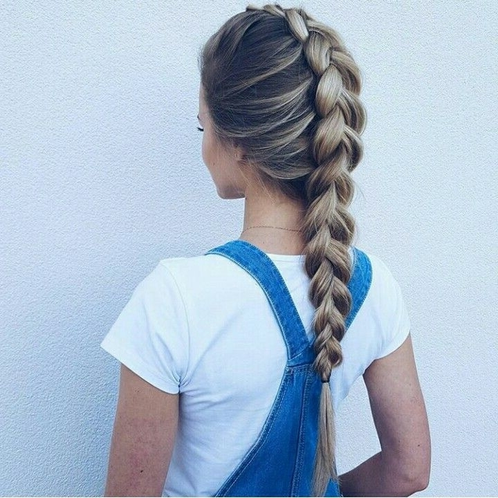 Hair Style | Dutch Braid, Chunky Thick Braid, Brunette Ombré | Hair within Most Popular Chunky Two-French Braid Hairstyles