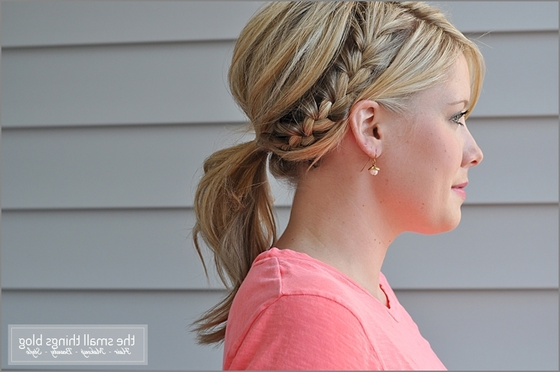 Half French Braid Ponytail – The Small Things Blog In Current Braided Hairstyles Up In A Ponytail (View 14 of 15)